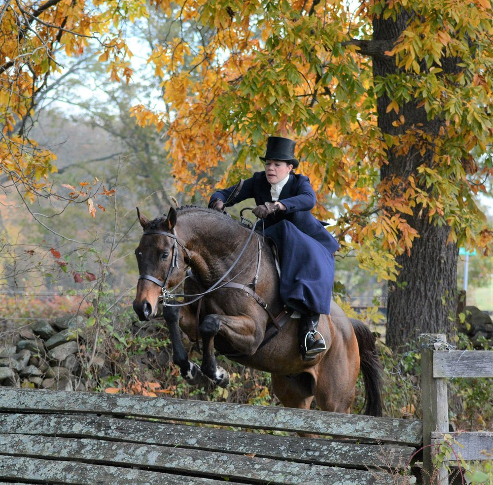 "Rider : Devon Zebrovious   Hometown : Middleburg, VA   Horse : ""King of Hearts"" -- (reg. Little King (ARG)/barn name King), 18 yr old, bay, TB gelding (Payant x Little Princess), and ""Morningstar"" (Eton) -- 10 yr old, bay, Hanoverian gelding (Escudo I), both owned by Cherry Blossom Farm. King was imported from Argentina as a $200k yearling, and his owner hoped he would be a stakes winner like his sire. Alas, he was sent home from the track after only 2 weeks of training and his owner was advised it would be best to find him a new career. He has been one of our field hunters since 2014, and has dabbled in Ladies Side Saddle show classes . Eton was imported from Germany where he was doing the 1.15m jumpers, and he was shown lightly in the hunters before I moved him back into the jumpers. He is also in his 2nd season of fox hunting. I also have ""Superstar"" (Hero) and ""Starstruck"" (Sully).   Devon's Background : I am a litigation attorney for DoD. I have ridden for over 35 years, and shown up to the 1.15m jumpers and 3'6"" equitation and hunters. My horse, ""Quest,"" was the 2014-2016 USEF Ladies Side Saddle National Champion. I have been riding and showing side saddle for about 15 years. My husband and I have a farm in Middleburg Hunt territory, and we enjoy selecting quality green horses to train and bring along for showing and/or hunting.   What is your racing experience, side saddle or otherwise? : I, along with SSCF vice president, Maggie Johnston, organized the first all side-saddle race in the United States at the Loudoun Point to Point Races in 2014. I have raced in almost every side saddle race held since then in the USA, and my previoius race horse, ""In Todd We Trust,"" was the SSCF overall high-point race horse in 2017 (he is now happily hunting hounds in Aiken, SC).   Do you fox hunt? Do you hunt aside? : I have been a subscriber of the Middleburg Hunt (VA) since 2003, and a subscriber of the Piedmont Fox Hounds (VA) since 2016. I have also hunted with a multitude of other hunts in PA, MD, and VA, as well as with almost 10 hunts in Ireland, where we try to take an annual hunting trip. I primarily hunt sideways, both here and overseas -- I find it to be so much more secure and confidence-boosting!   What got you interested in racing aside? : Maggie Johnston and I were at a side saddle hunt with the Meath Foxhounds, organized by the incomparable Susan Oakes, in 2013, and there we met Phillipa Holland, founder of the Dianas of the Chase Race in England. After talking to her, we were determined to organize our own side saddle races in America. I had also been a huge fan of steeplechase racing, and love to do a multitude of equine sports, so it seemed like a great fit.   What are your side saddle goals for 2018? : To finish out the 2017-2018 hunting season, to compete in the 2018 SSCF races, to continue to bring along a couple of green or new horses, to show in the Ladies Side Saddle division over the summer, and to start hunting again in the fall! I would also like to try to take a hunting trip to England in late October."