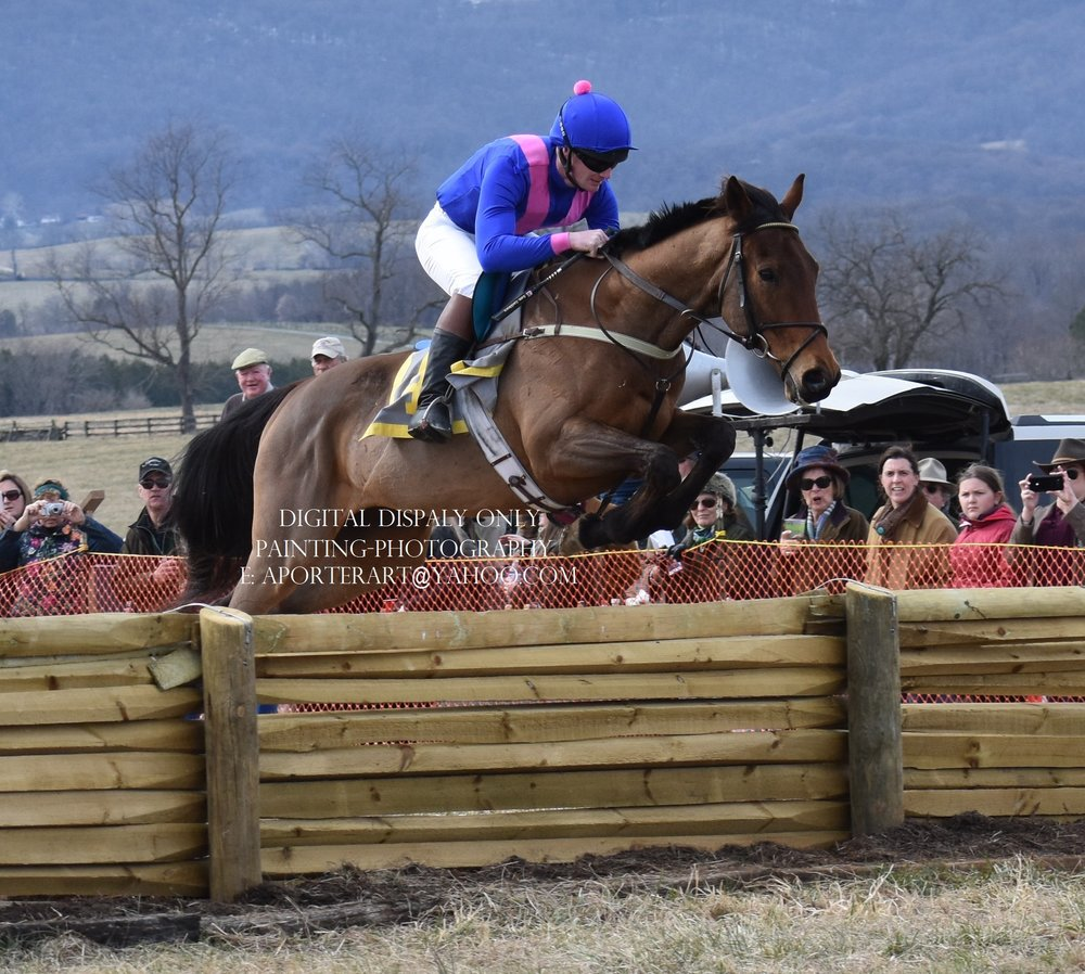 Sam Cockburn at the Piedmont Foxhounds Point to Point, March 2018. Photo by Alice Porter.