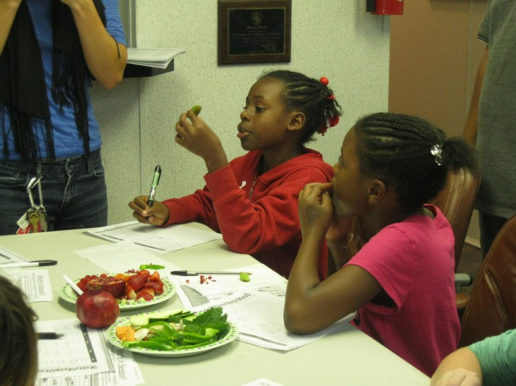 The kids got to sample all kinds of fresh fruits and vegetables, some of which they had never tried before. The sampling laid out on the table included mushrooms, bell peppers , sweet potato, carrots, pomegranate, kiwi, strawberries, and raspberries.