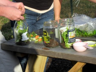 Soil Science Jars