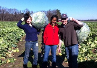 gleaning day of service