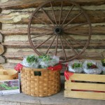 Tryon Road Farm Stand