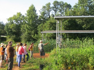 One additional unique feature at Piedmont Biofarm is the presence of large solar panels.