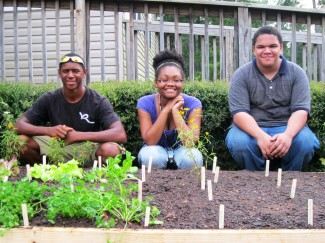 Mario, Kiara, and Seth: Raise the Roots crew, aka Garden Ninjas, aka Youth Garden Mentors