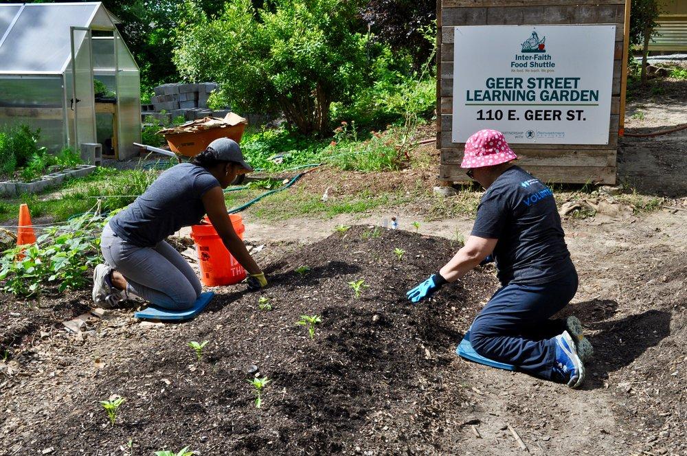 Blue Cross NC employees volunteering at the Geer Street Learning Garden.