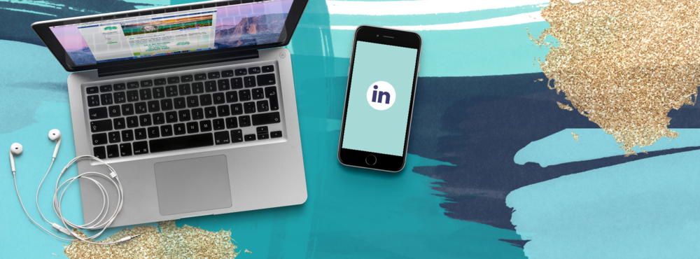 social media page header–IN.png