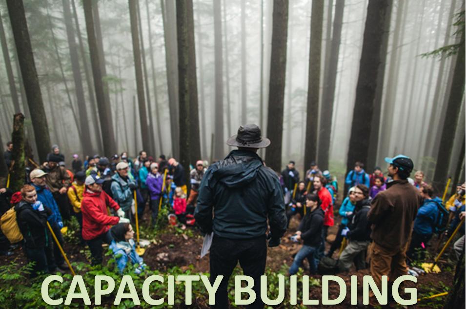 Capacity building.jpg