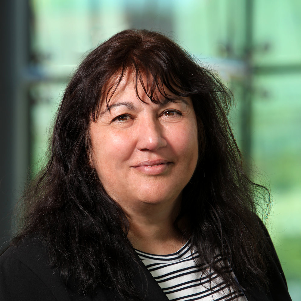 Financial Controller    Annette Randazza  is a strong business finance professional with experience in the Life Sciences arena. Prior to joining IPI, Annette was employed at Cell Signaling Technology (CST) for 15 years where she served as Financial Controller, Director of Operations, and Director of Procurement. Annette managed multiple aspects of CST's expanding business including grants, royalties, small business loans, procurement, vendor negotiations, and logistics agreements. Annette's knowledge of business and life science make her an integral addition to the IPI team.