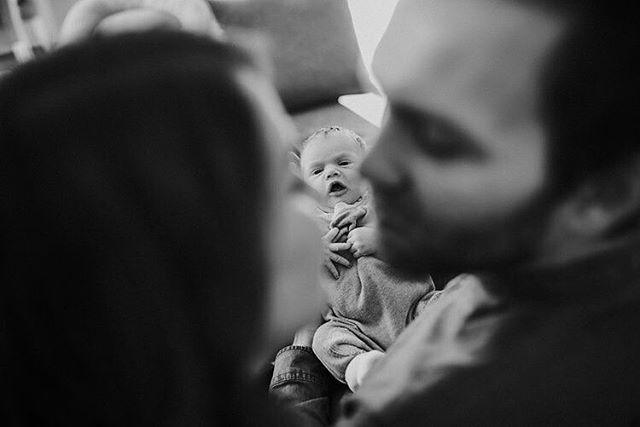 Wenn zwei sich lieben freut sich der Storch! Habt ihr den blogeintrag von den drei süssen hier eigentlich schon auf meiner Homepage entdeckt? Ich werd euch den link in meine bio packen. Kann mir eigentlich jemand sagen warum  man den eigentlich nicht in den post direkt packen kann? Und nur noch wenige schritte bis zum 1000 follower whoop whoop.... #newborn #family #newfamiliymember #itsstartetwithakiss #familymember #littleone #baby #biglove #loveofyourlife #tinyone #wunderbaretage #inesmeierfotografie