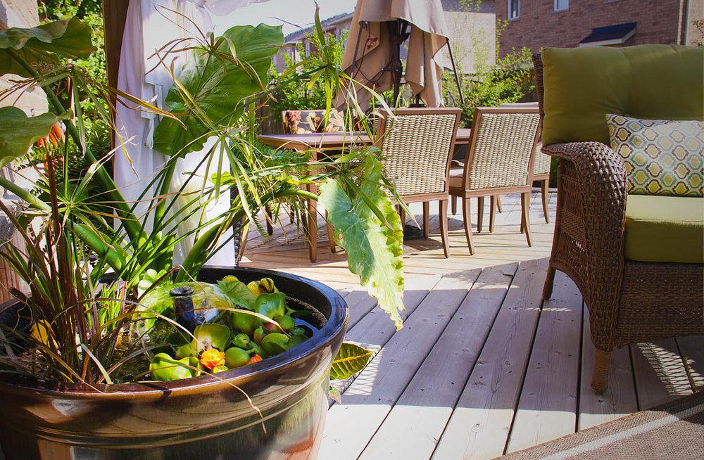 garden-sm14.jpg