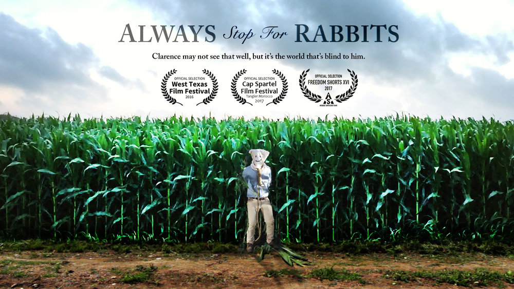 "<font size=""3""><b>Always Stop For Rabbits</b>/ short</font>"