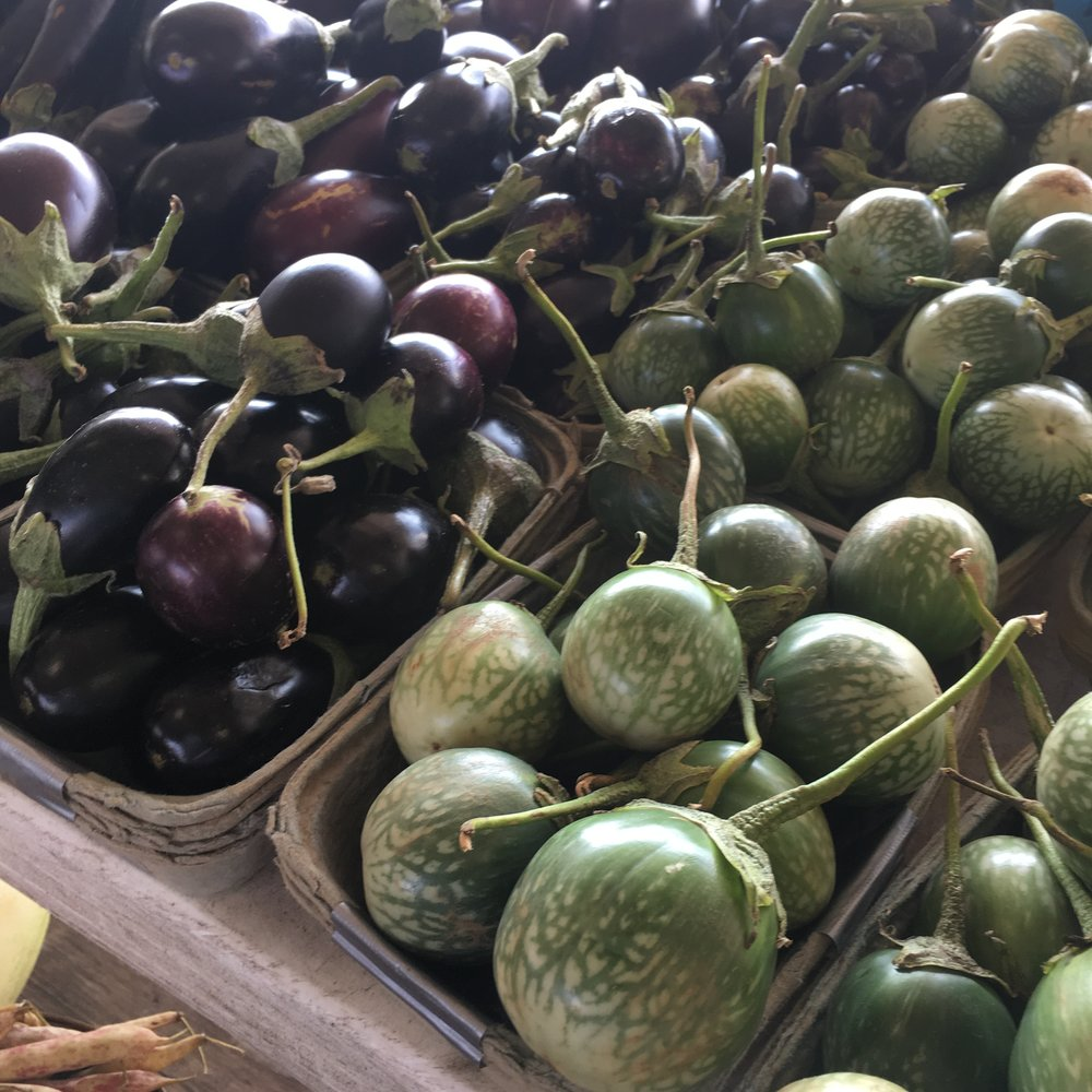 Mini eggplants! Perfect for stuffing, roasting and pickling