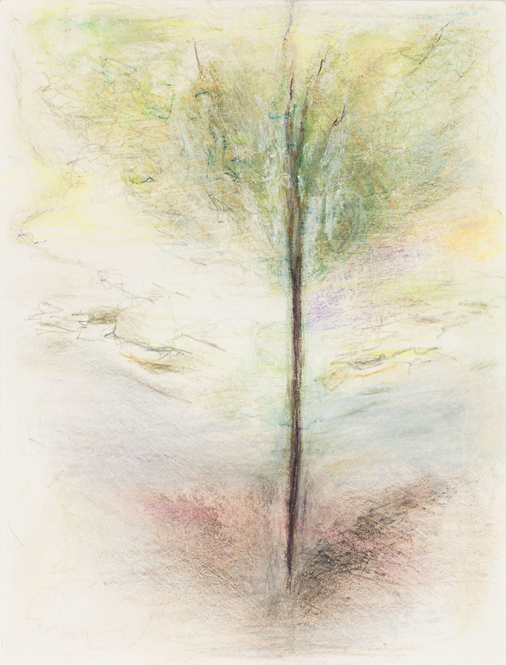 Hedda Sterne, The Flying Tree, 1993, Colored pencil, pastel on paper, 12 in. x 9 in. (30.48 cm x 22.86 cm)