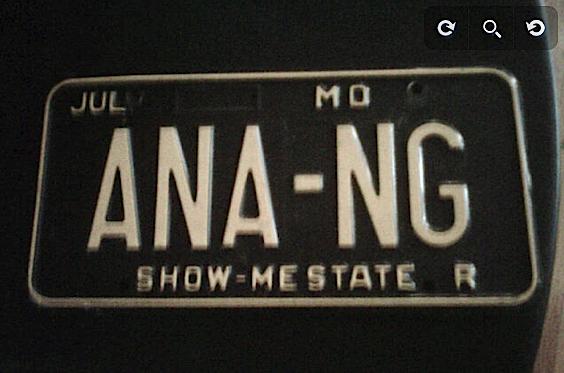 Ana Ng licence.png