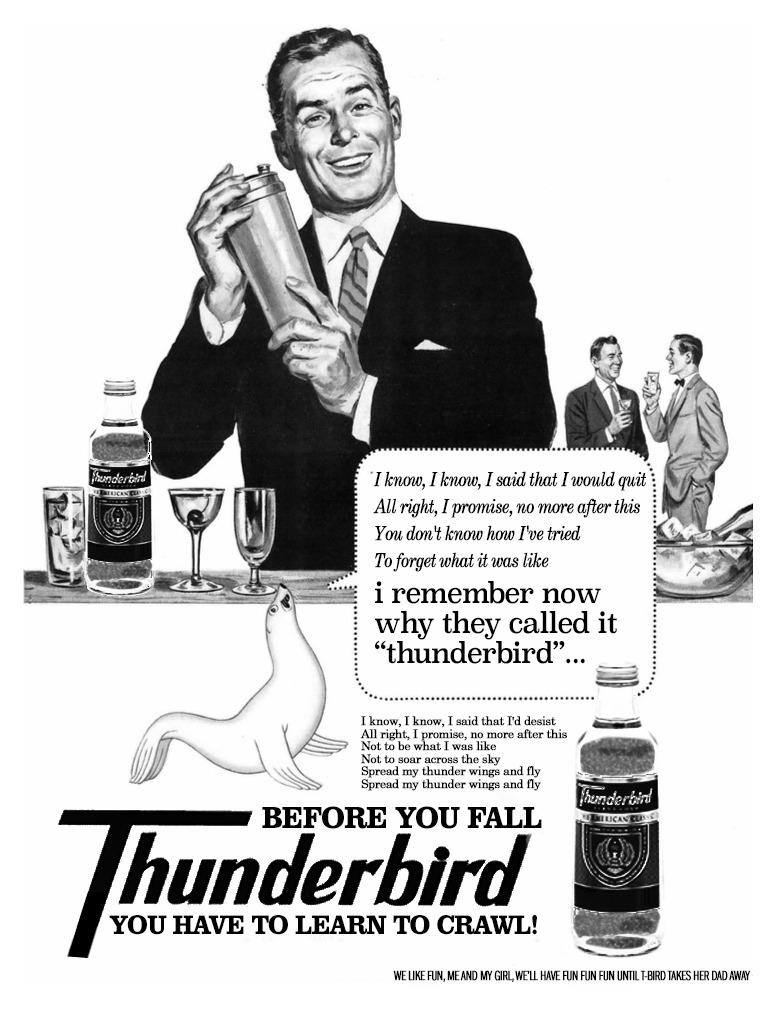 Thunderbird didi.jpg