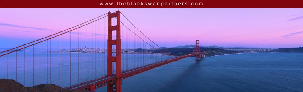 www.theblackswanpartners.com.png