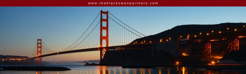 www.theblackswanpartners.com2.png