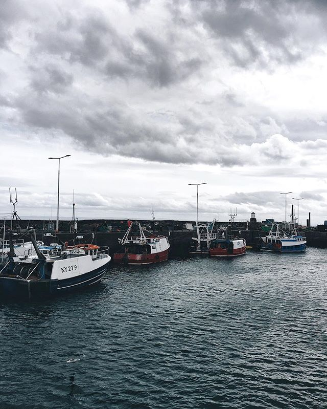 The Fife Coast of Scotland. | Exploring the Eastern Coast entailed the most delicious fish and chips in Anstruther, taking in scenic views of the North Sea and enjoying the vivid sunset at historic St. Andrews. | Also, these fishing boats belong in a painting. |  #socality #vsco #fife #scotland #munnliving