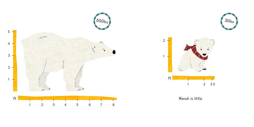 Little Nanuk Design & Illustration