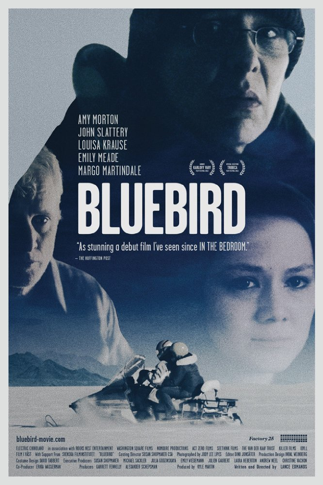 Bluebird, 2013