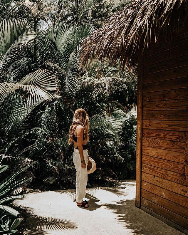 Jungle fever 🌿🌿 • •  #mytinyatlas #passionpassport #iamatraveler #sheisnotlost #travelstoke #welivetoexplore #instatravel #travelgram #passportready #travelblogger #wanderlust #adventure #explore #ilovetravel  #vsco #vscocam #wander #followmeto #wanderer #getlost #travelblog #theglobalwanderer #letsgosomewhere #wearetravelgirls #globalwanderer #dominicanrepublic #occidentalpuntacana #barcelostories
