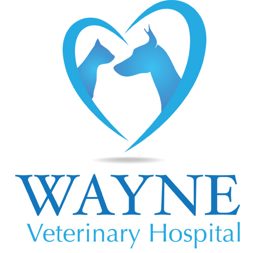Wayne Veterinary Hospital