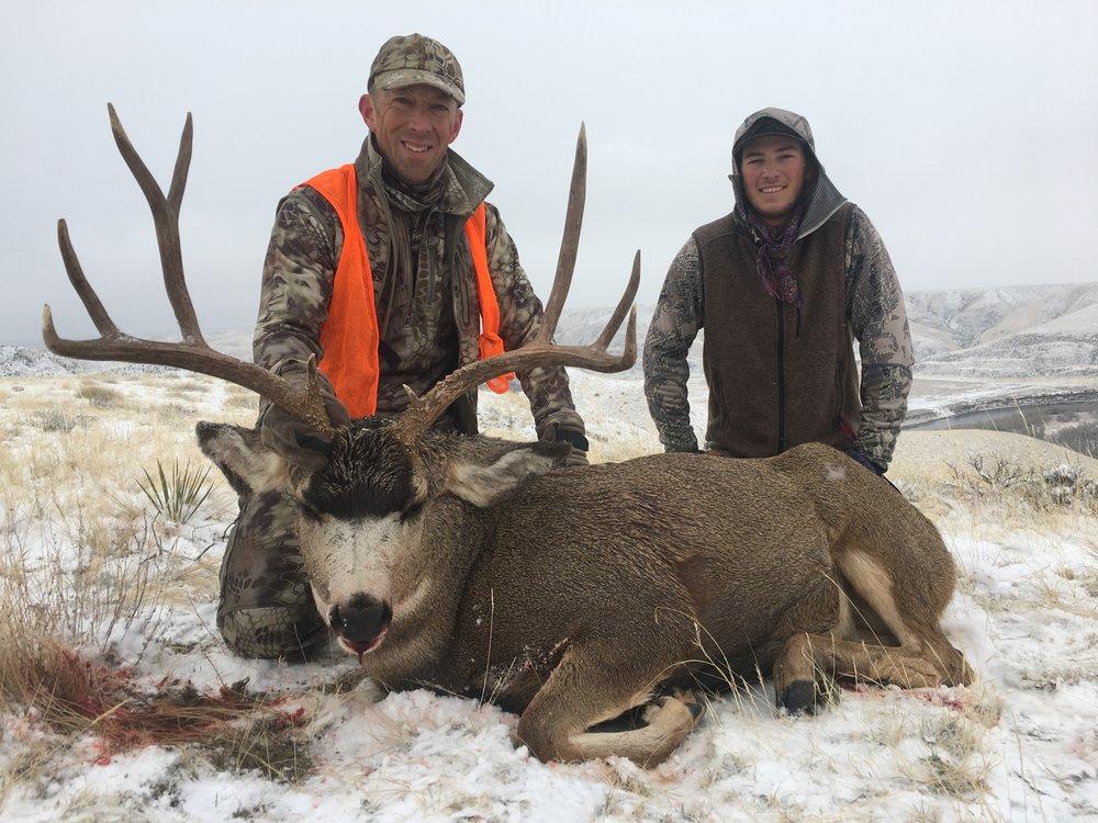 Management Mule Deer