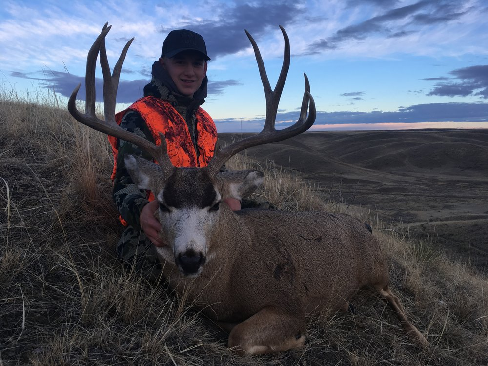 Excellent First Mule Deer