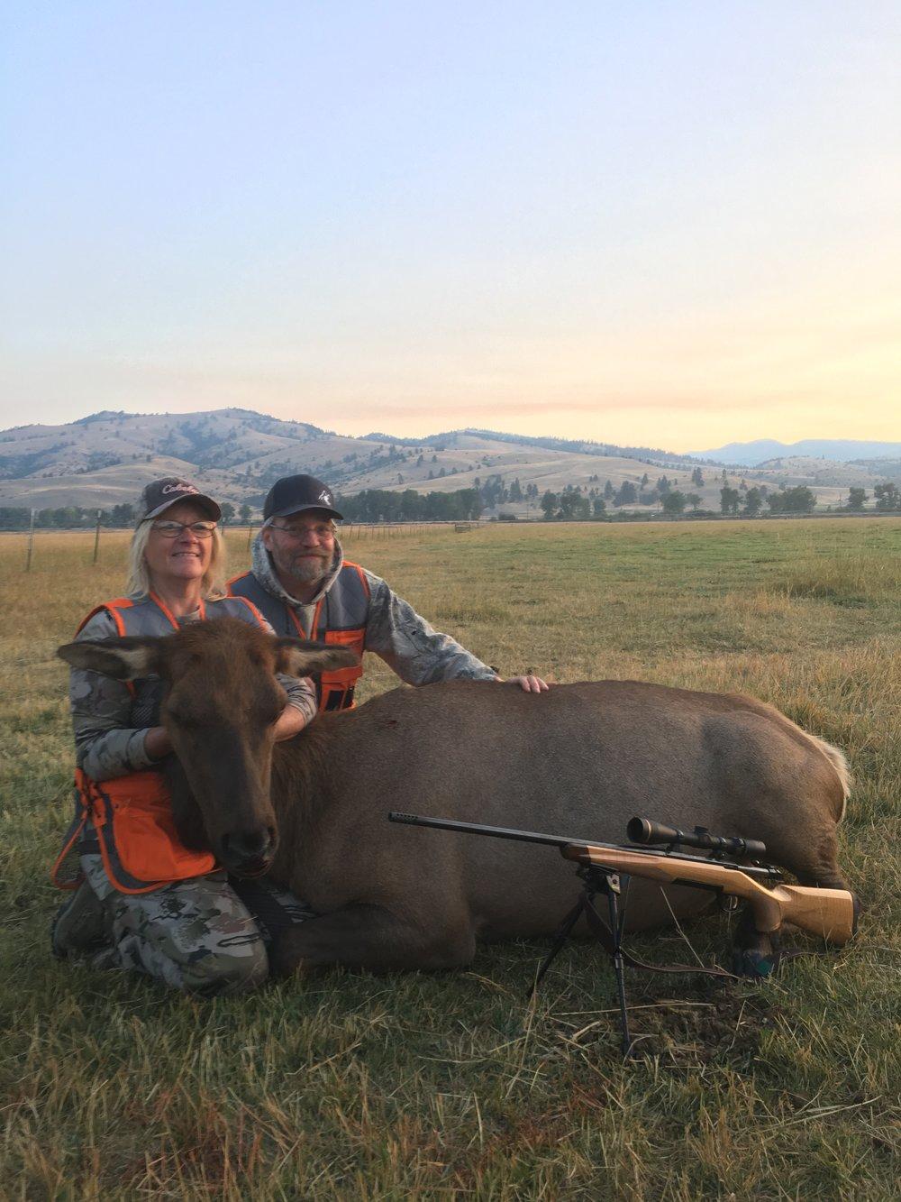 Cow Elk.JPG