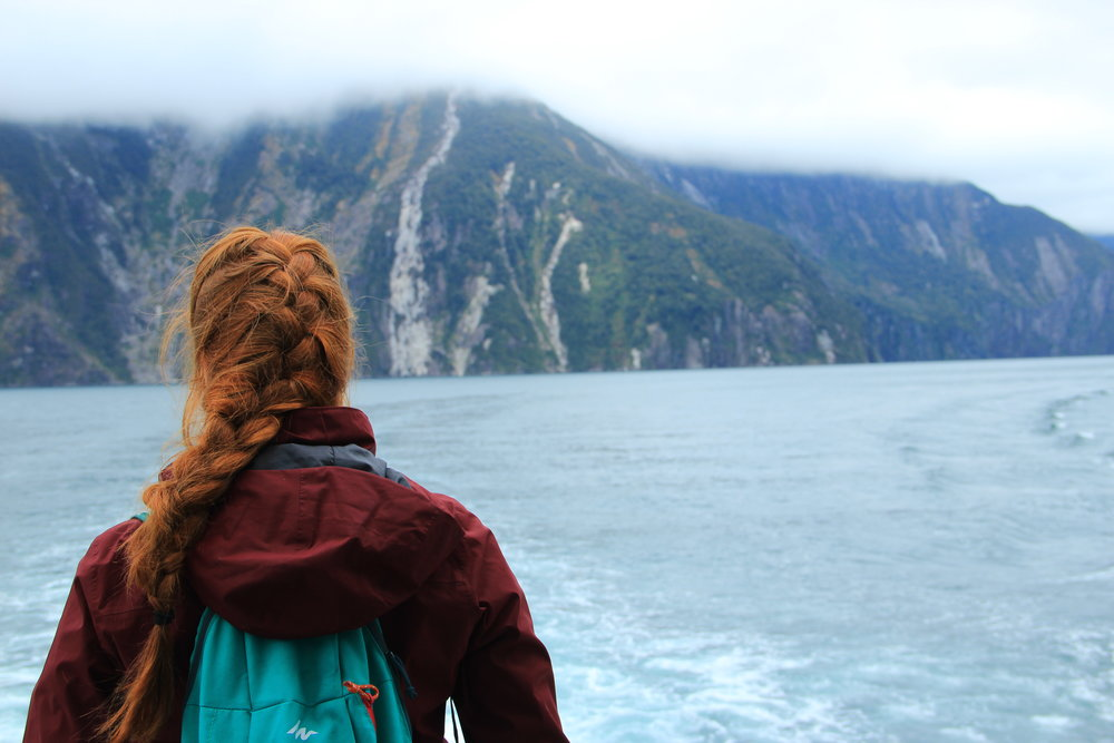 Looking out onto Milford Sound, South Island, NZ.