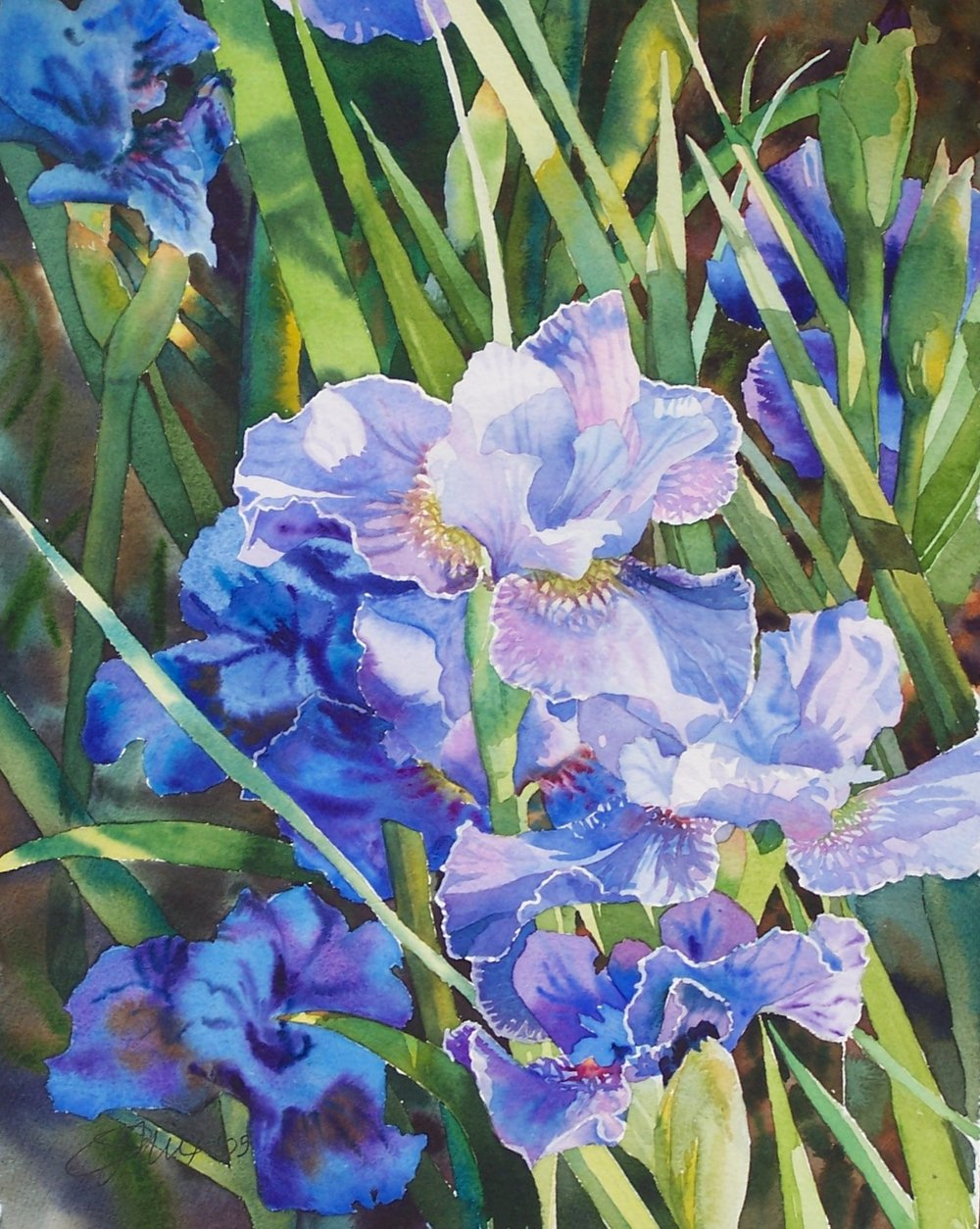 Blue Iris (sold)
