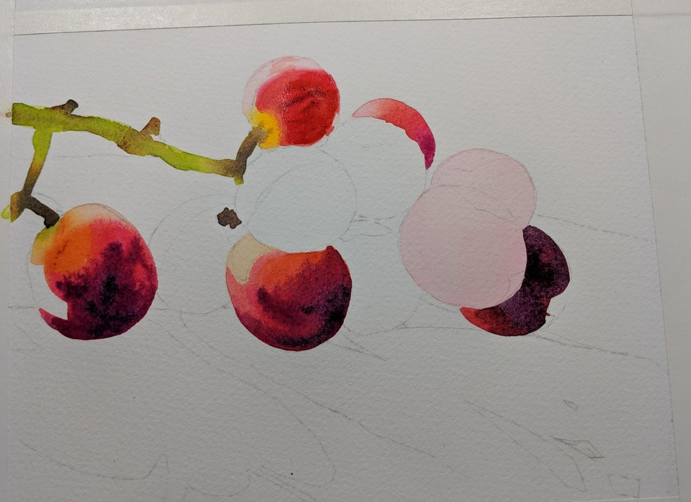 continue painting one grape at a time, remembering to paint around reflective light shapes as seen on the furthest left grape.