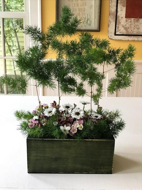 tabletop forest 2.JPG