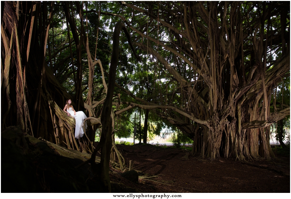 0045Hawaii Wedding