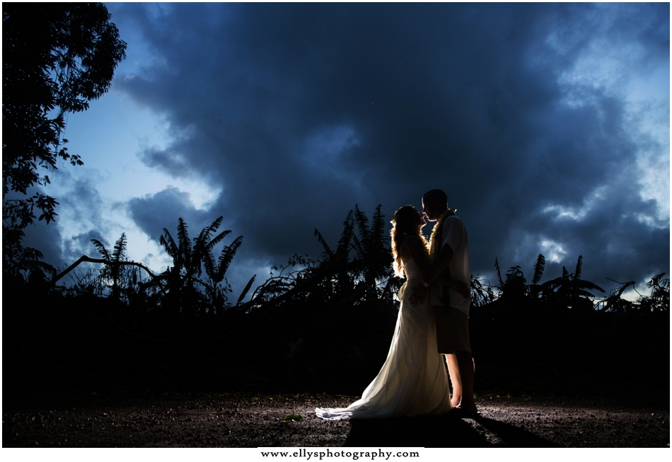 0069Hawaii Wedding