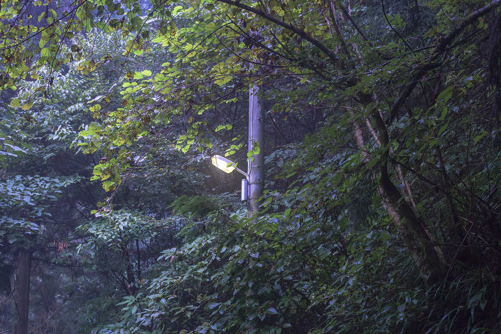 lamp2.jpg