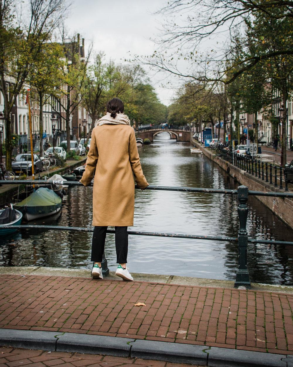 Amsterdam - Babaton Stedman Coat Aritzia - Style Apotheca