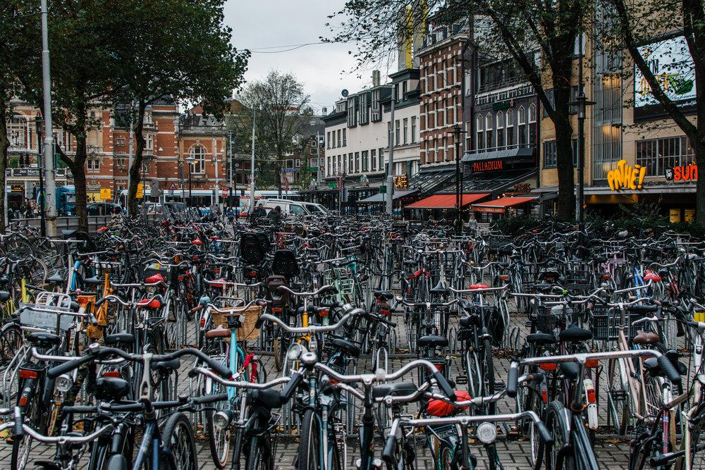 Amsterdam bikes - style apotheca