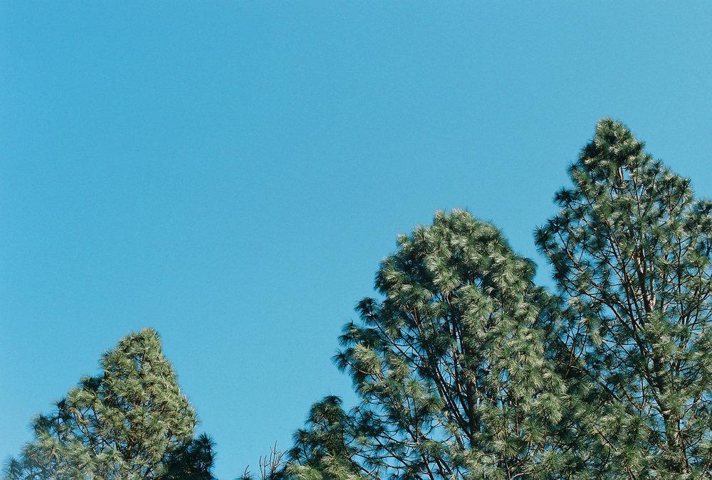 sky_12.jpg