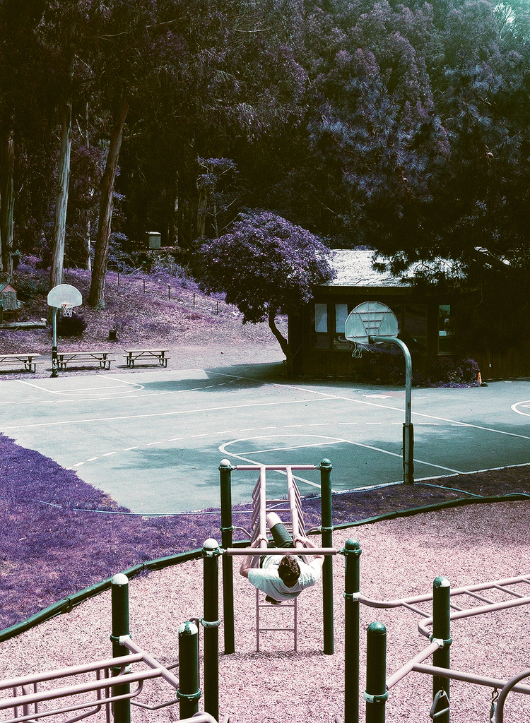 violet_07.jpg