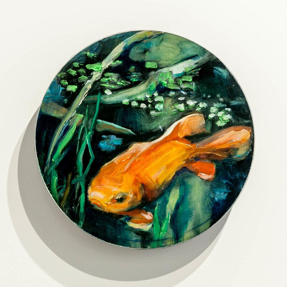 49. SOLD, John Lancashire, Goldfish
