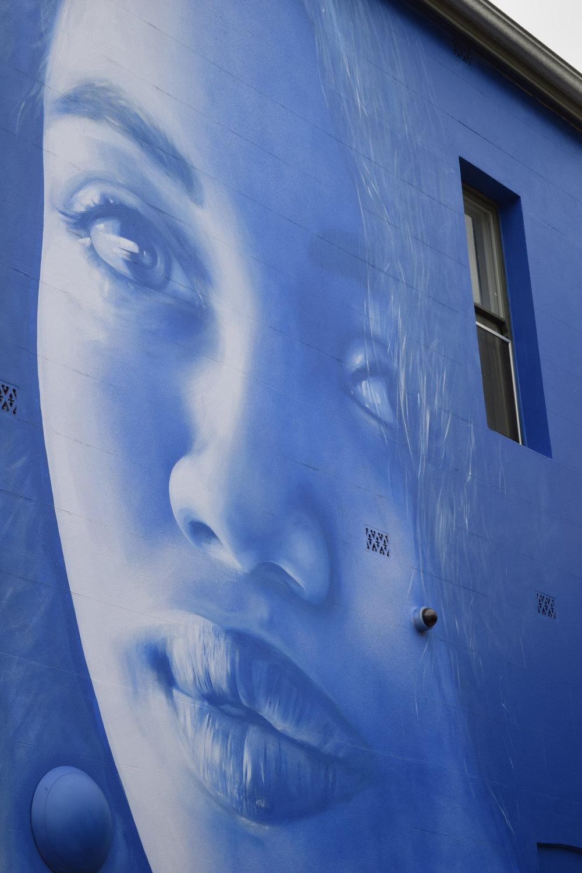 Claire Foxton, 74 Marryatt street, Ladder