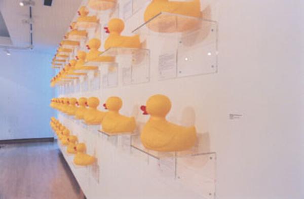 wild ducks of na - tectonic4.jpg