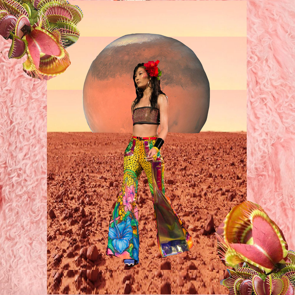 Collage by Lexi Laphor using runway image by Natalie Black