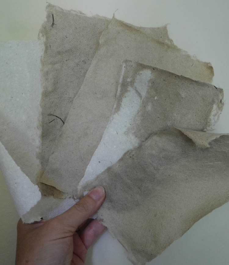 papermaking9.jpg