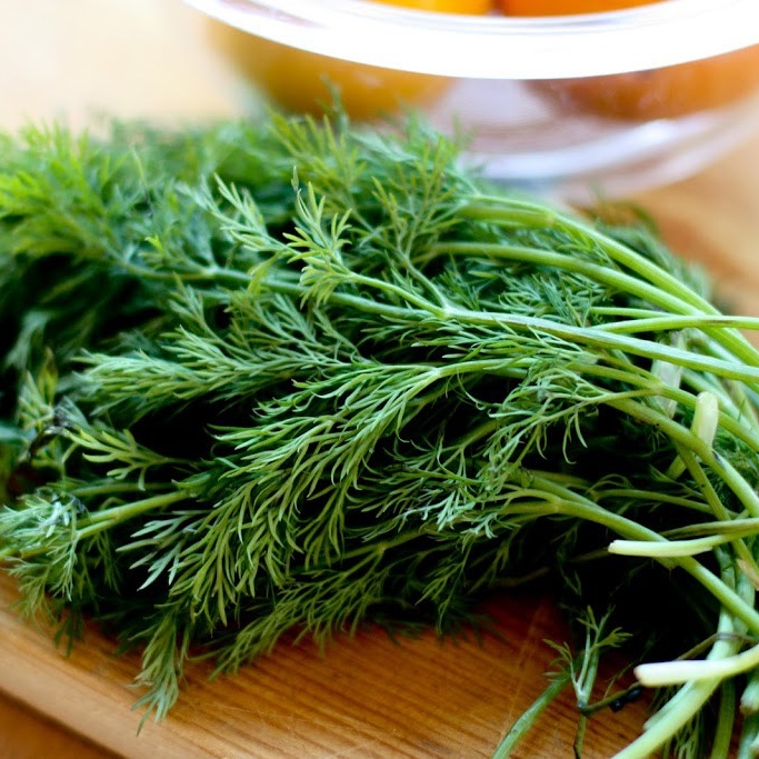 DILL -