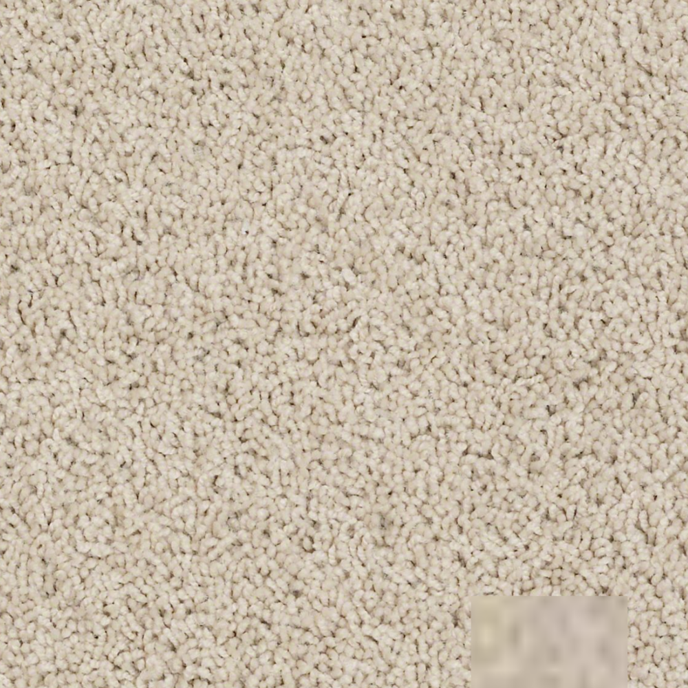 Luxurious Pile Carpet - Beverly Glen - Chic Cream