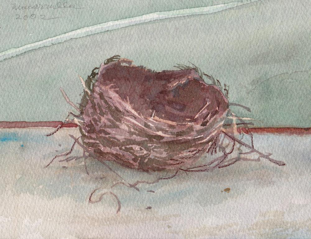 Nest R.jpg