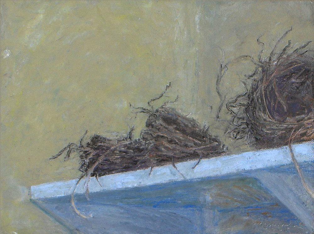 3 Nests R.jpg