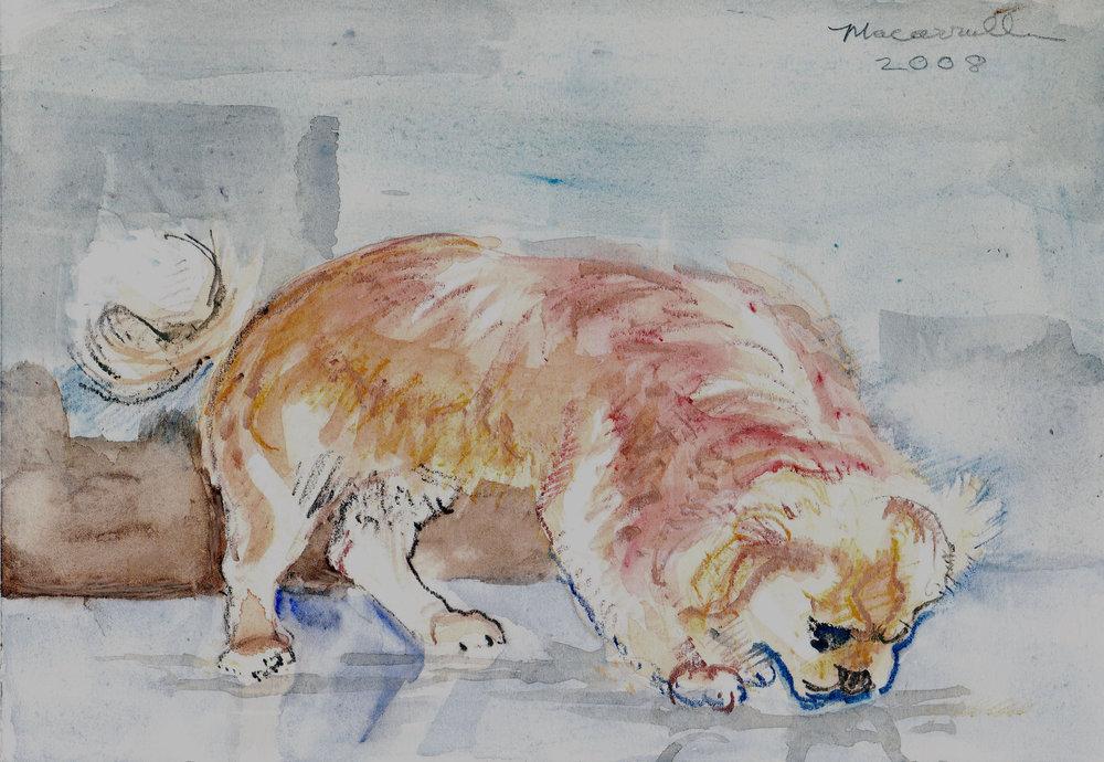 "Champ I, 2008 Watercolor, 7"" X 10 1/4"""